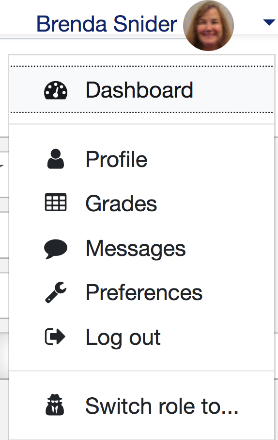 User Menu for accessing profile and other tools